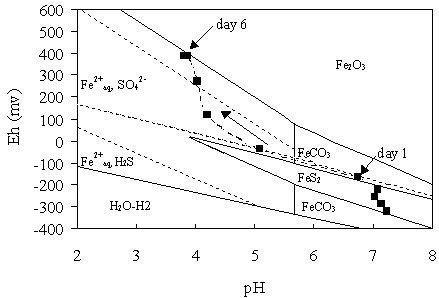 Figure 3a.