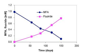 Microbial Defluorination of MFA by the PCNB Consortium