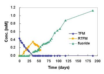 Microbial Defluorination of TFM by the BDI Consortium Following Five Consecutive Transfers in Basal Salts Medium Amended With TFM