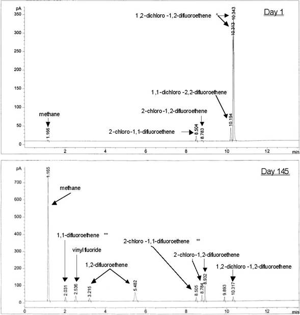 Chromatogram of Products Formed During 1,2-Dichloro-1,2-difluoroethene Dehalogenation by the Methanogenic Consortium GSI