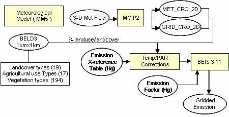 Data Flow for the Developed Biogenic Mercury Emission Processor