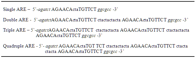 Sequence of Four Androgen Response Elements Based on Information From Horie-Inoue, et al. (2004) and Haendler, et al. (2001)