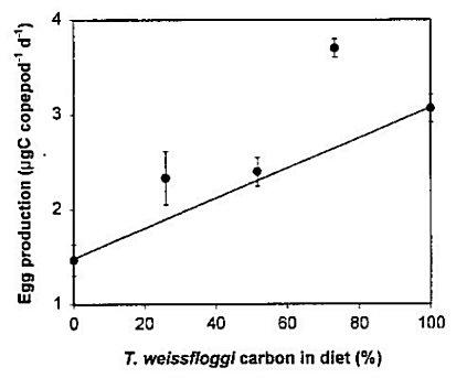 Fig 8. Acartia tonsa Egg production vs. percent Thalassiosira weissfloggii in diet