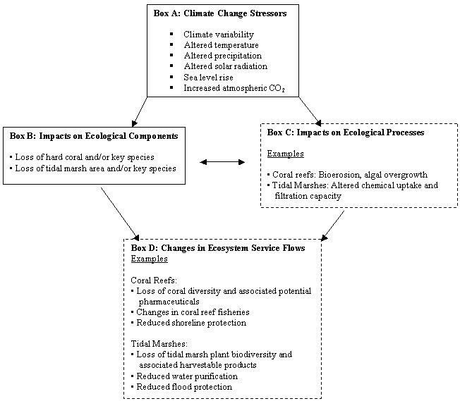 climate change ecosystem effects pdf