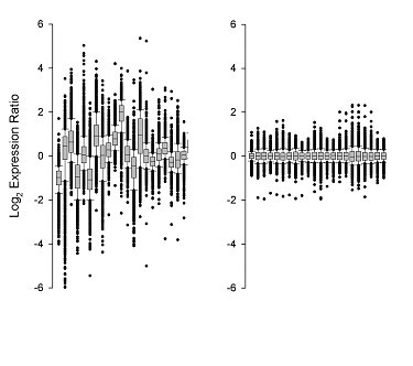 Figure 1. Data display shows the effect of normalization on the spread of 22 microarrays (log2 scale). Box and whiskers plot shows median (line) 25th-75th percentiles (box) and 5th-95th percentiles (whiskers) with outliers as individual points. Adjacent pairs are replica swaps. Left panel plots log2 ratio before normalization. Right panel plots these data after normalization. The alignment of median (zero) and scaling of data brought 90 percent of data points within 0.25. Thus, in each case the outliers are defined as those genes (~240) falling below or above the 5th-95th percentiles, respectively at a level of 0.5-fold.