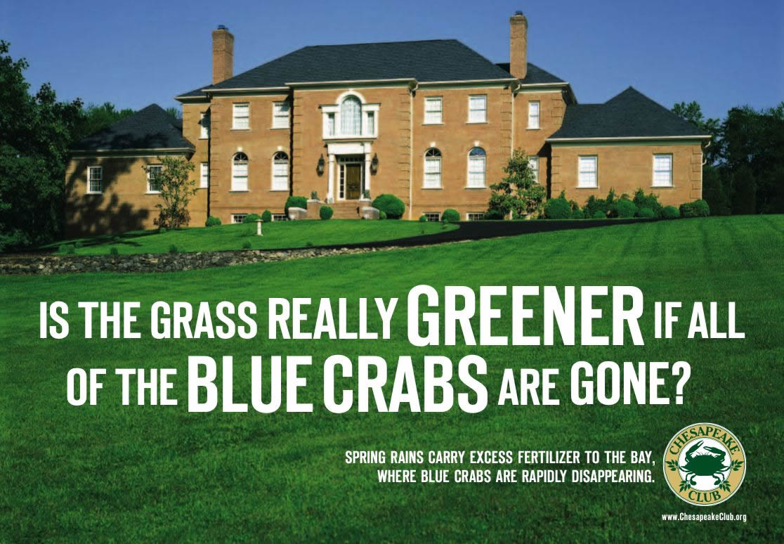 featured products nonpoint source outreach toolbox us epa is the grass really greener