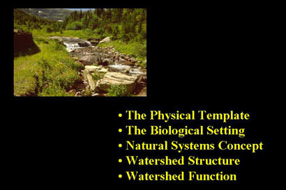 ecology topics